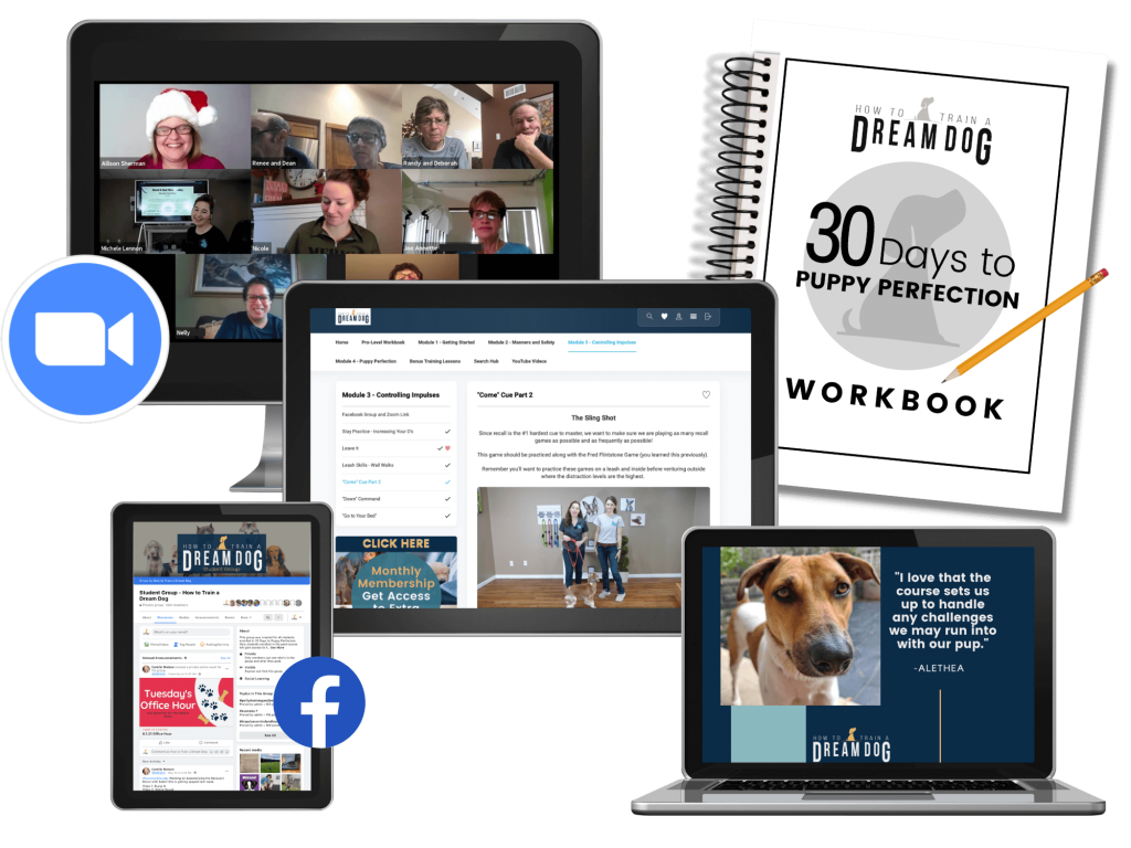 Puppy Perfection Course plus Pro support, live weekly calls, workbook, private Facebook group